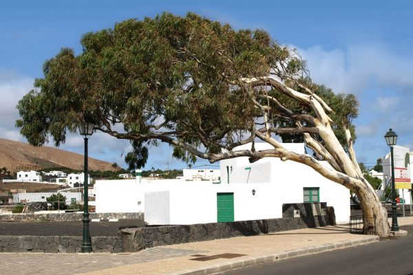 villa-rayito-uga-4